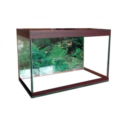 фото аквариум на 20 литров